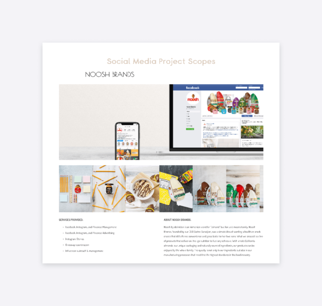 social media project scopes as can be seen on the website of homemade social boutique agency